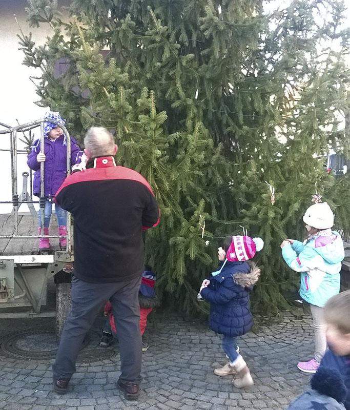 Der Baum war ganz schön groß für die Kleinen.
